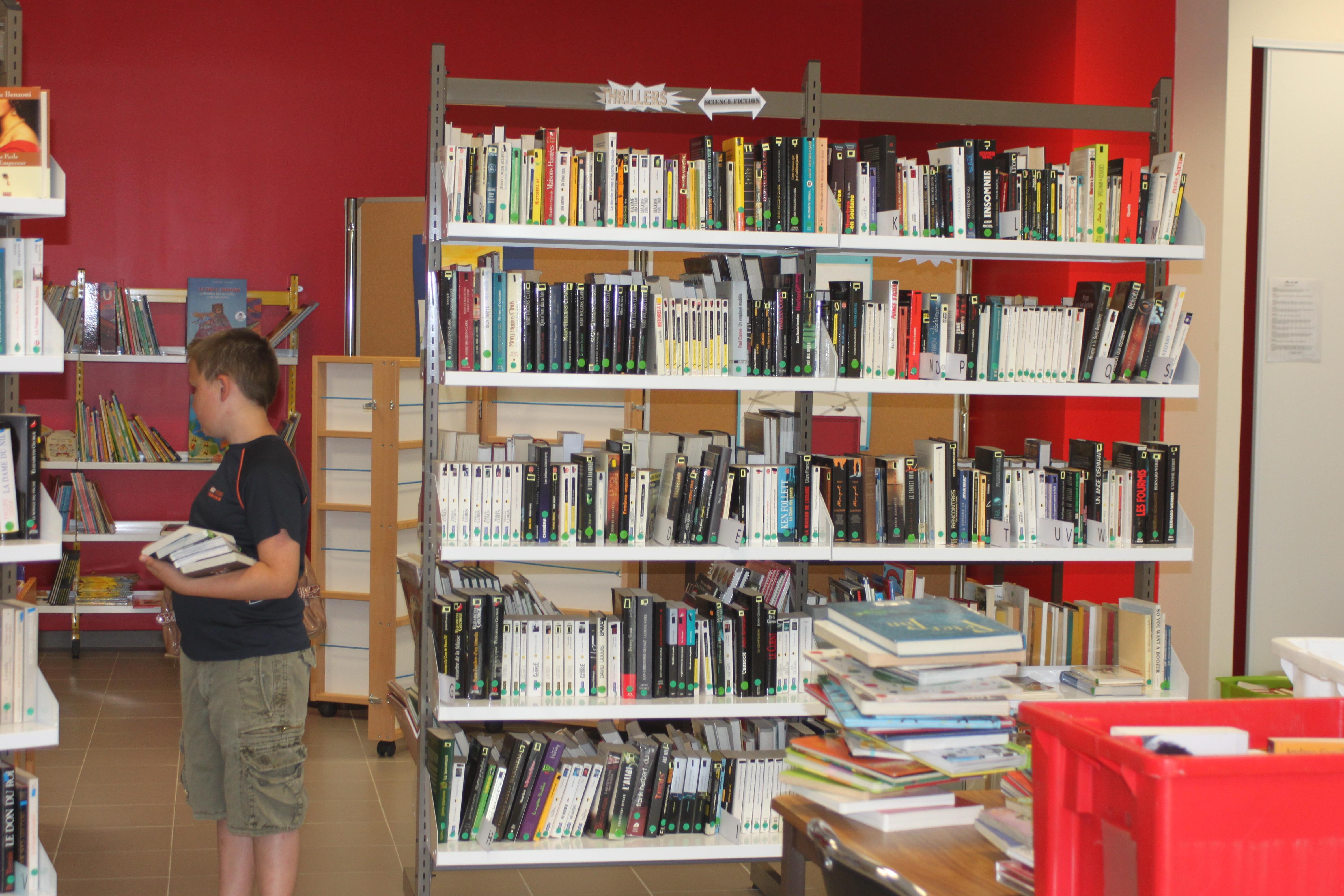 Bibliothèque - Aout 2013 009