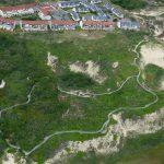 Sentier de la dune parabolique (6)